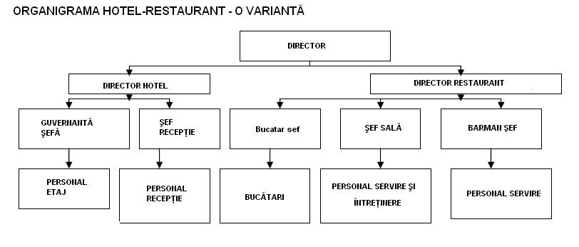 Model organigramă hotel - restaurant