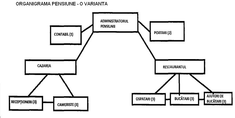 Model organigramă pensiune