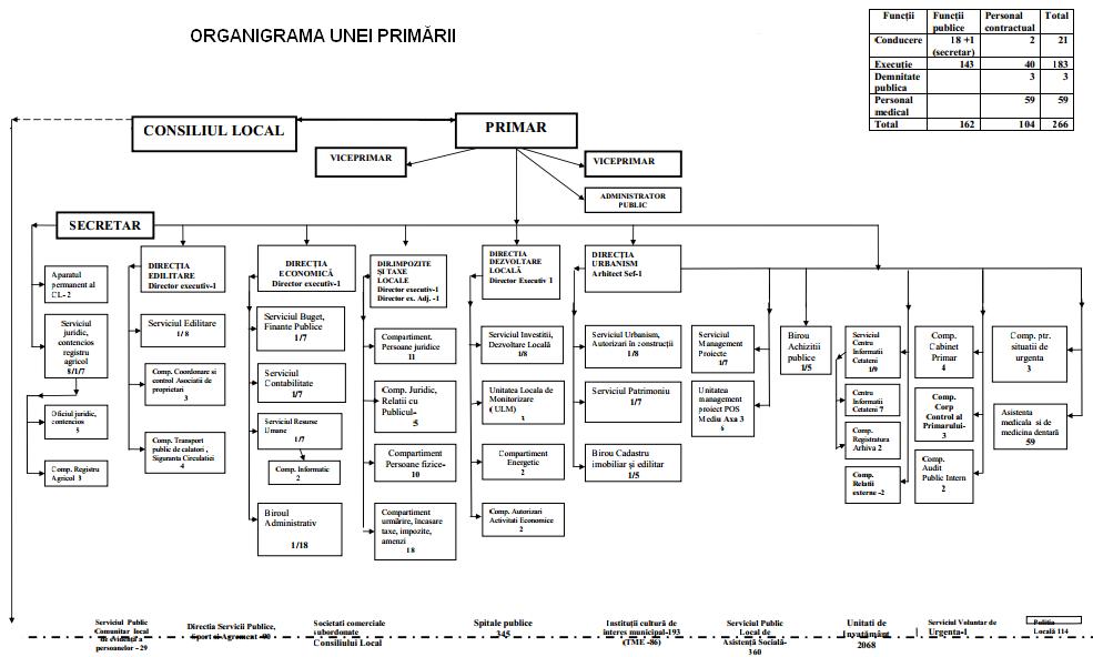 Model organigramă primarie