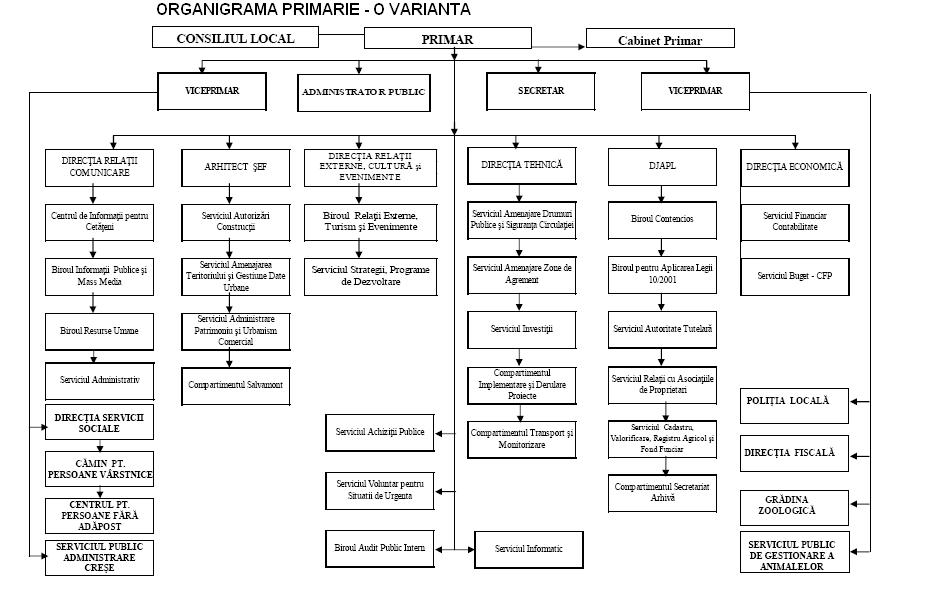 Model organigrama primarie - varianta 4