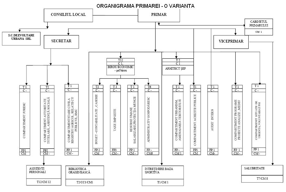 Model organigramă primarie - varianta 6