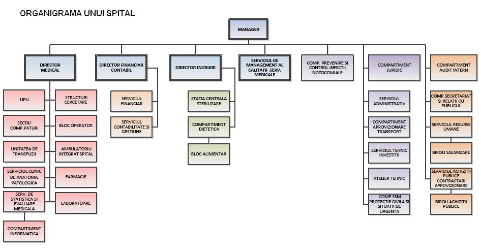 Model organigrama spital - varianta 1