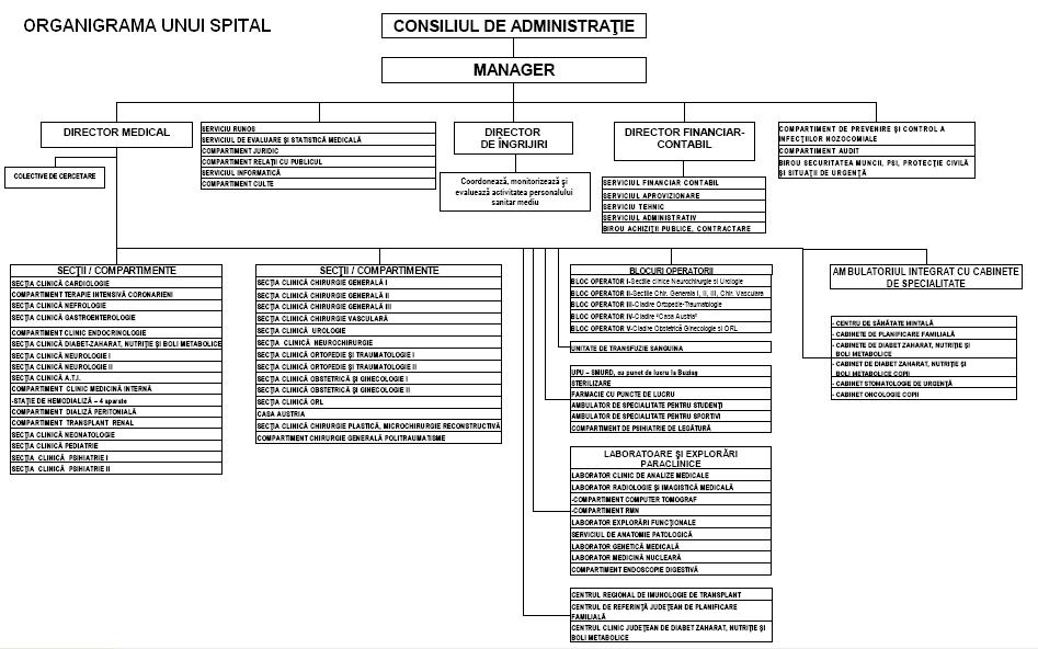 Model organigrama spital - varianta 2