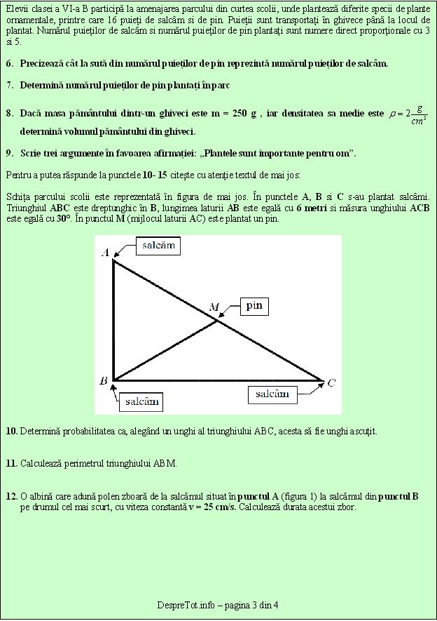 Teste Pisa Evaluare Nationala Matematica Si Stiinte Clasa